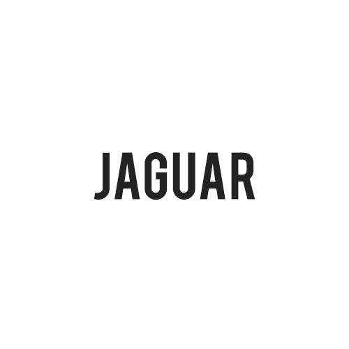 Jaguar Hundegitter