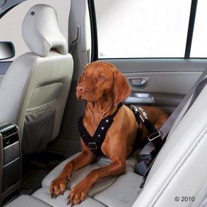 Hundesikkerhedsseler